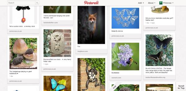 PrimroseUK's Pinterest Garden Wildlife board