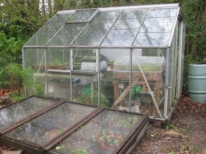 Peter's Greenhouse