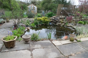 Pond and Greenhouse