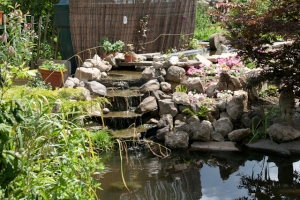 Jackie's new Waterfall water feature