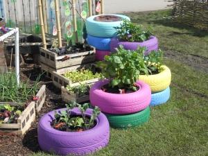 Painted Tyres in Malvern Student Garden