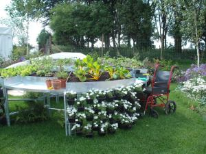 Wheelchair accessible potting bench
