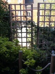 A garden trellis