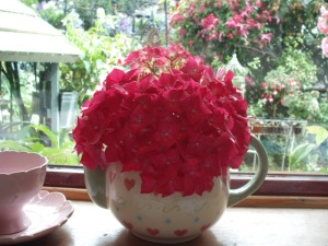 Hydrangeas arranged in a teapot