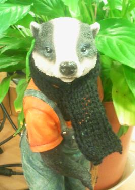 billy scarf