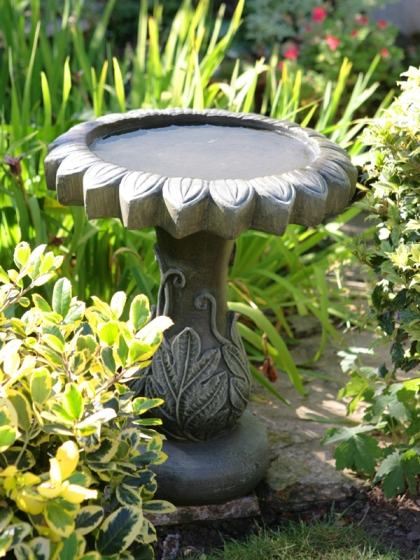 Alpine Leaf Bird Bath from Primrose