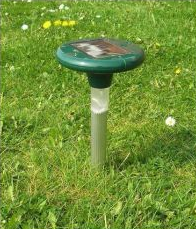 Get rid of moles with the solar moler from Primrose