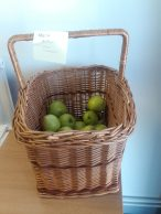 A basket of apples at Primrose