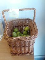 A basket of apples at Primrose