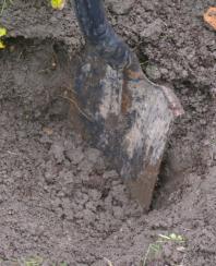 Dig a big hole