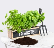 I am Minted - Personalised Planter from Primrose