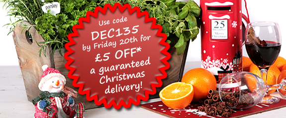 Order from Primrose by 20th Dec