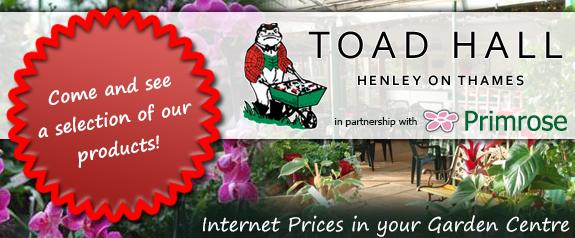 Primrose at Toad Hall garden centre