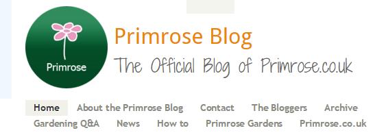 Primrose Blog